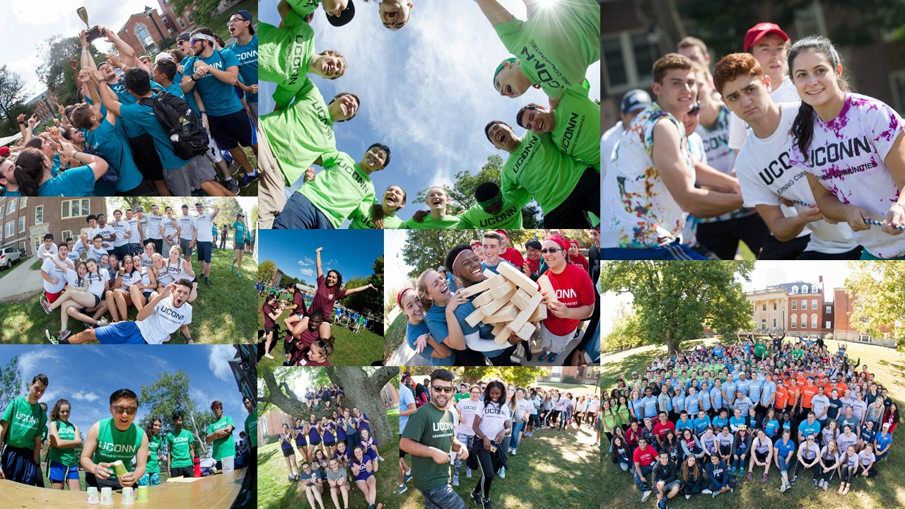 LC Field Day Collage
